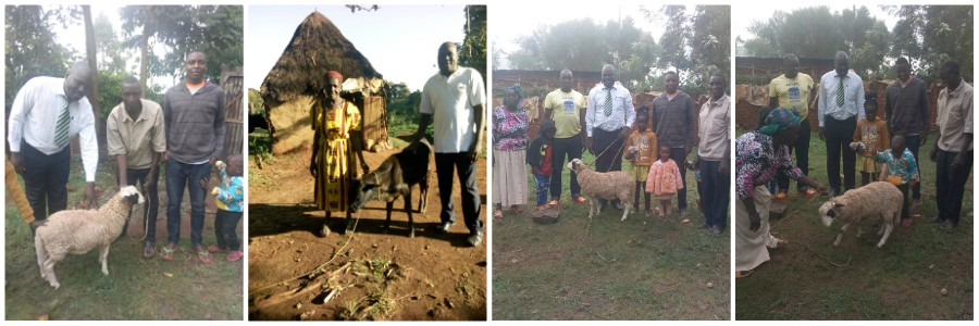 GMFC WFF Moisbridge Kenya Haron Blessing Calf to Widow BANNER